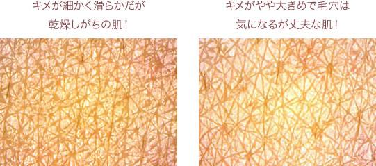 キメが細かく滑らかだが乾燥しがちの肌!キメがやや大きめで毛穴は気になるが丈夫な肌!