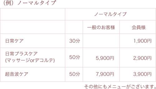 (例)ノーマルタイプ価格表