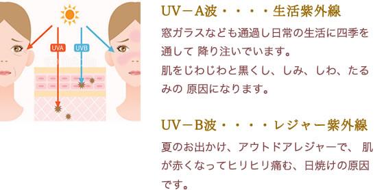 UV-A波・・・・生活紫外線窓ガラスなども通過し日常の生活に四季を通して降り注いでいます。肌をじわじわと黒くし、しみ、しわ、たるみの原因になります。UV-B波・・・・レジャー紫外線夏のお出かけ、アウトドアレジャーで、 肌が赤くなってヒリヒリ痛む、日焼けの原因です。